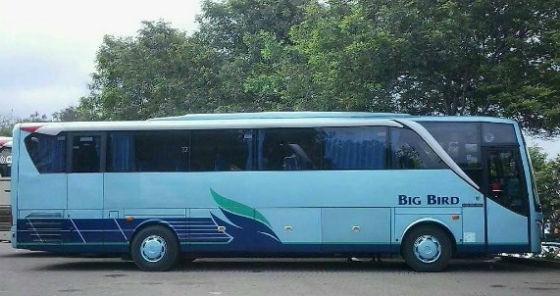 jasabuspariwisata-jumlah-pelancong-melonjak-bus-pariwisata-bahagia-big-bird